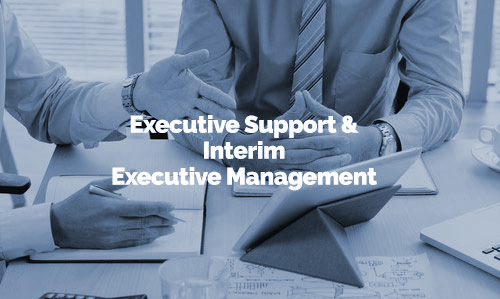 Executive Support & Interim Executive Management